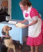 Making homemade dog treats