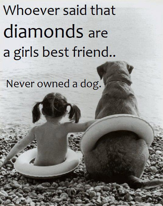 Click for top dog quotes from the internet