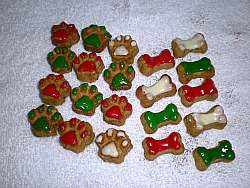 Christmas dog biscuit