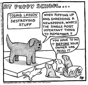 dog school humor