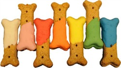 decorating dog treats with dog treat icing