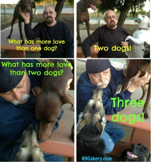 More love than one dog