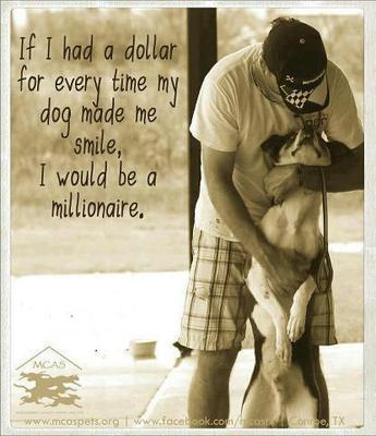 I Love My Dog Quotes Fascinating My Dog Makes Me Smile