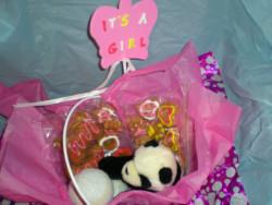 puppy dog gift basket for female puppy
