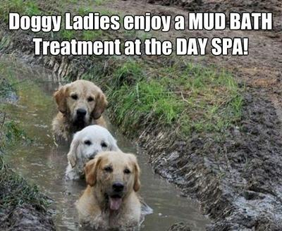 A real mud pack!