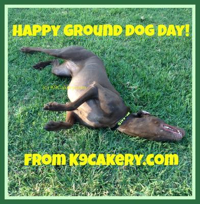Happy Ground Dog Day!